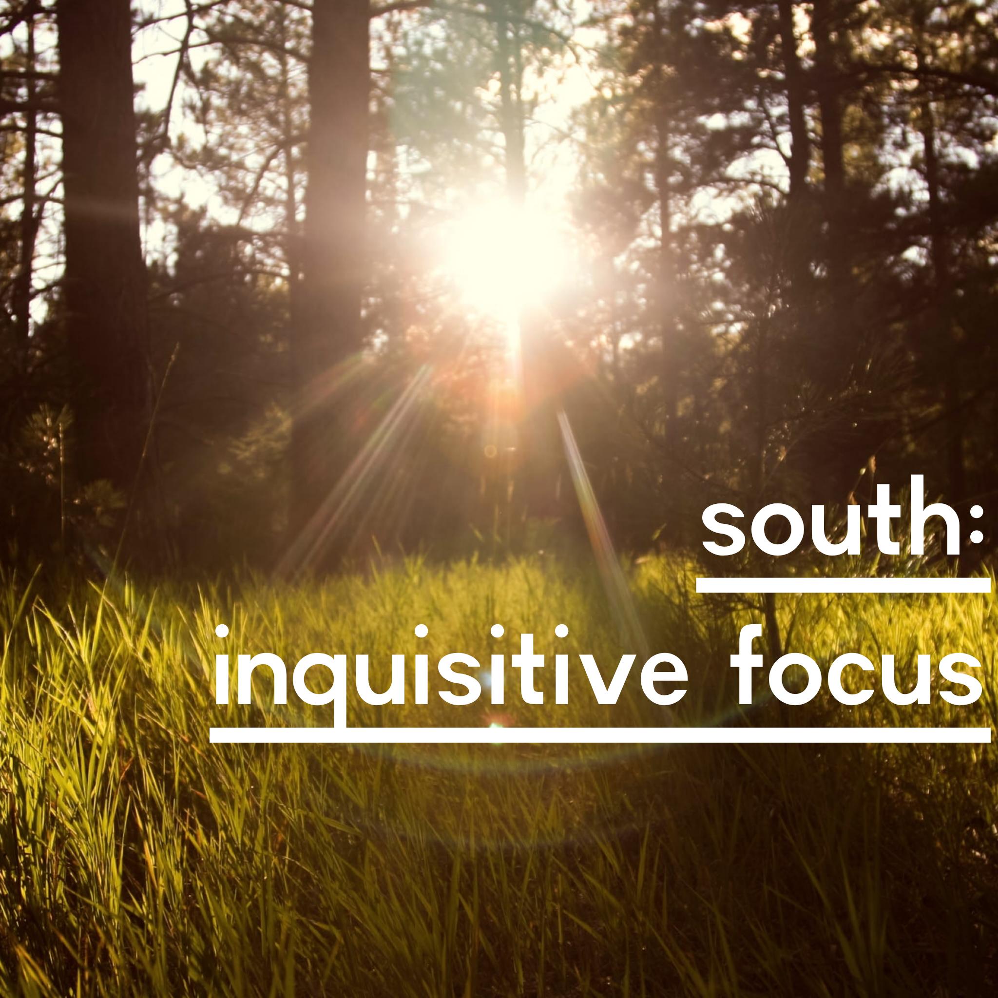 south inquisitive focus