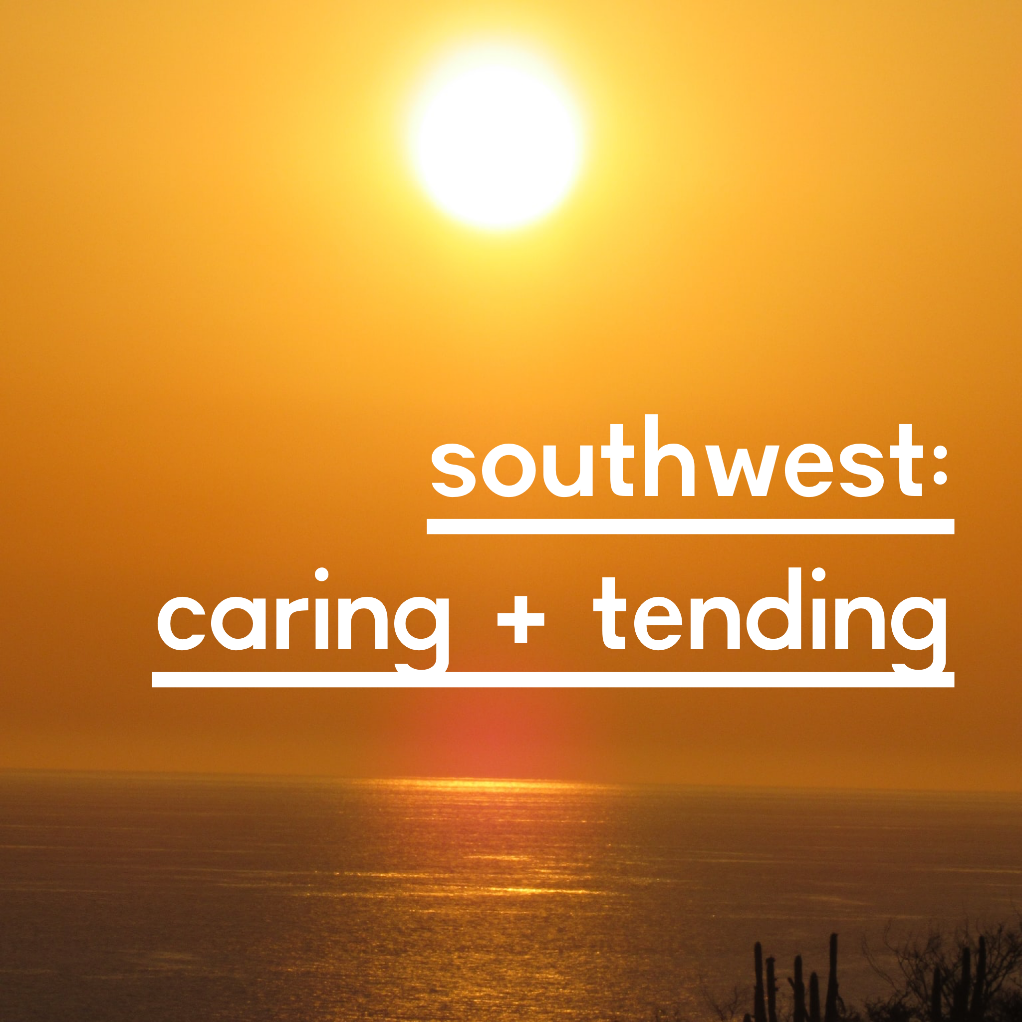 southwest caring and tending