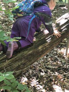 girl climbing tree