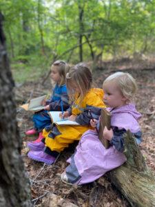 nature journals forest school