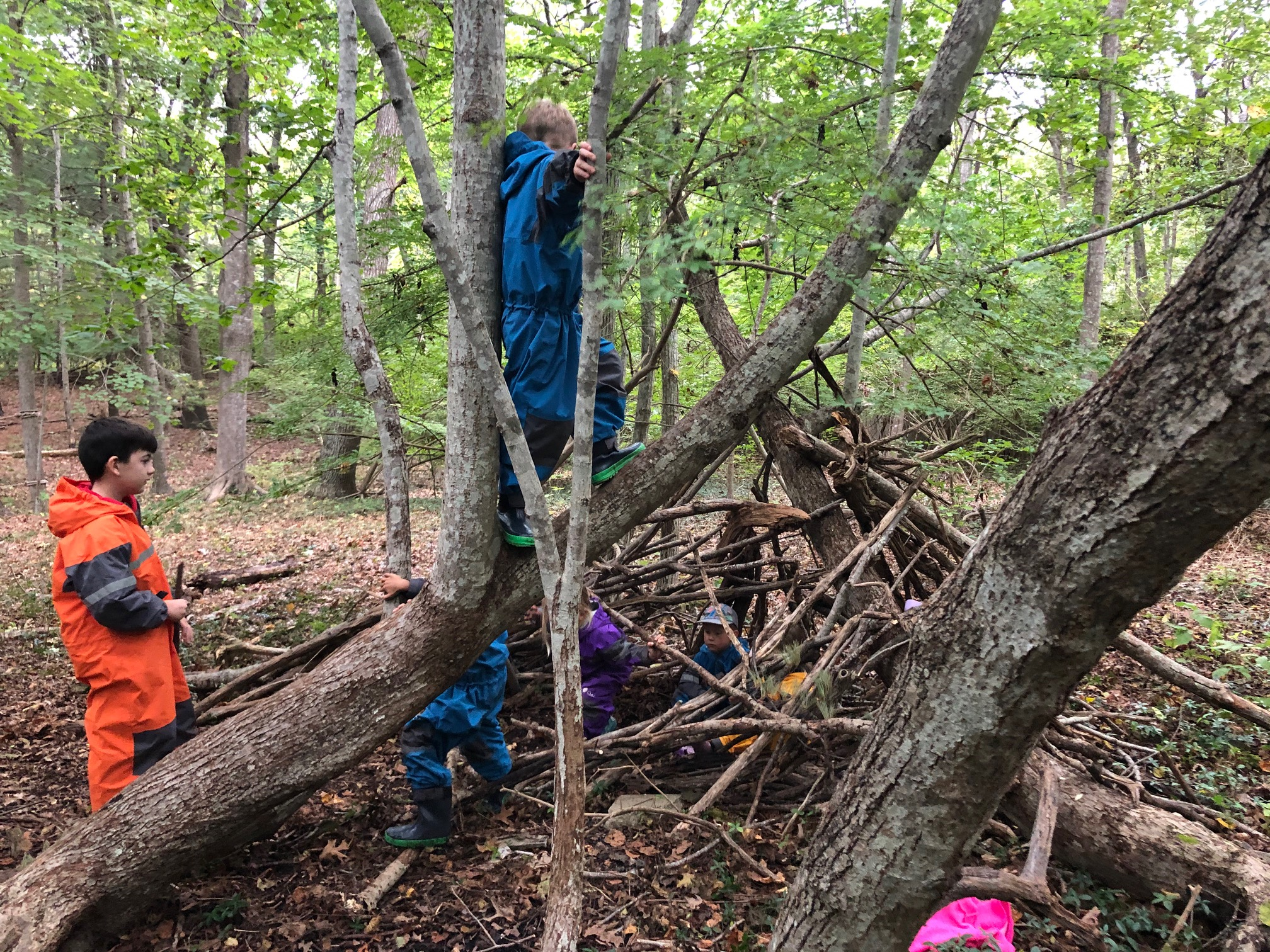 aishling forest school den building