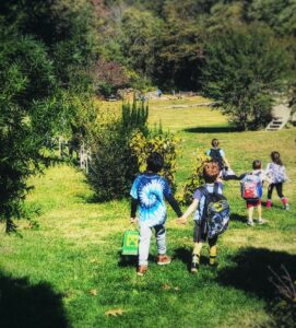 aishling forest school, SEL, forest school