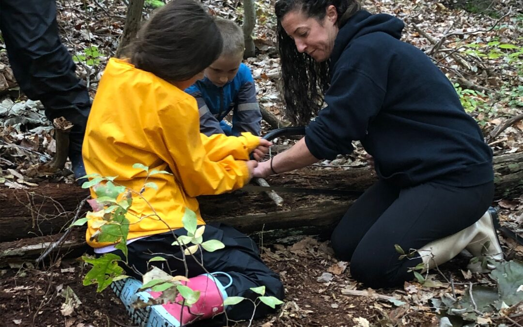aishling forest school, bow saw