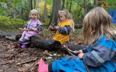 Whittling: What Is It and Why It's Awesome?