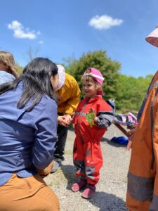 storyline aishling forest school