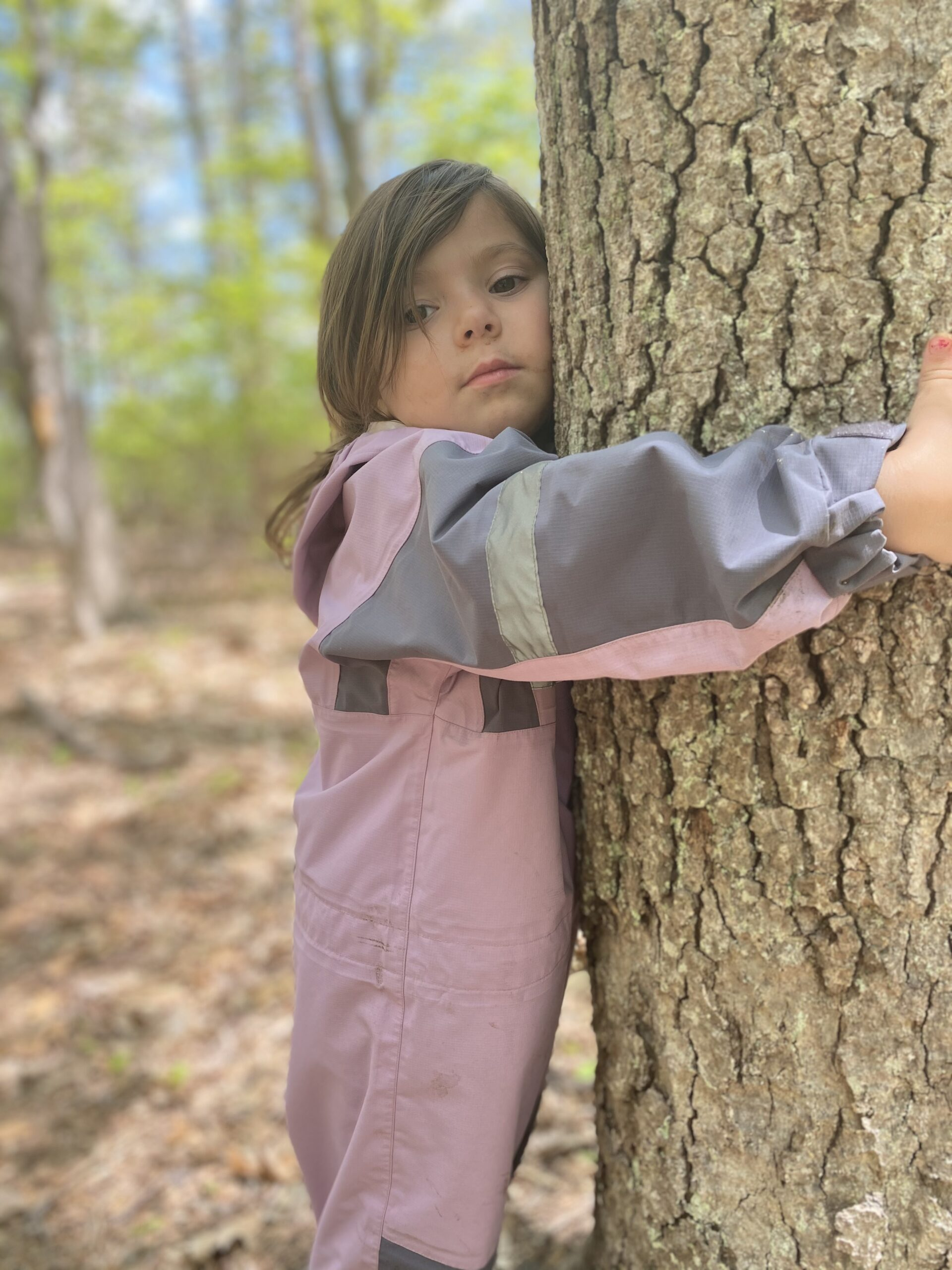 tree hugging child aishling forest school